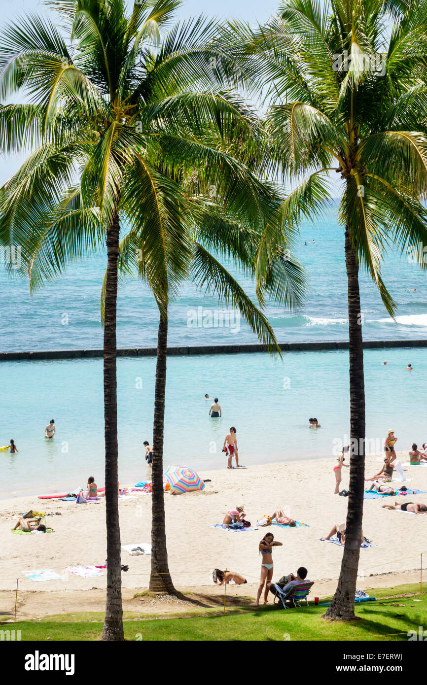 Waikiki Beach Honolulu Hawaii Hawaiian Oahu Kuhio Beach Park Pacific Ocean palm trees sunbathers - Stock Image