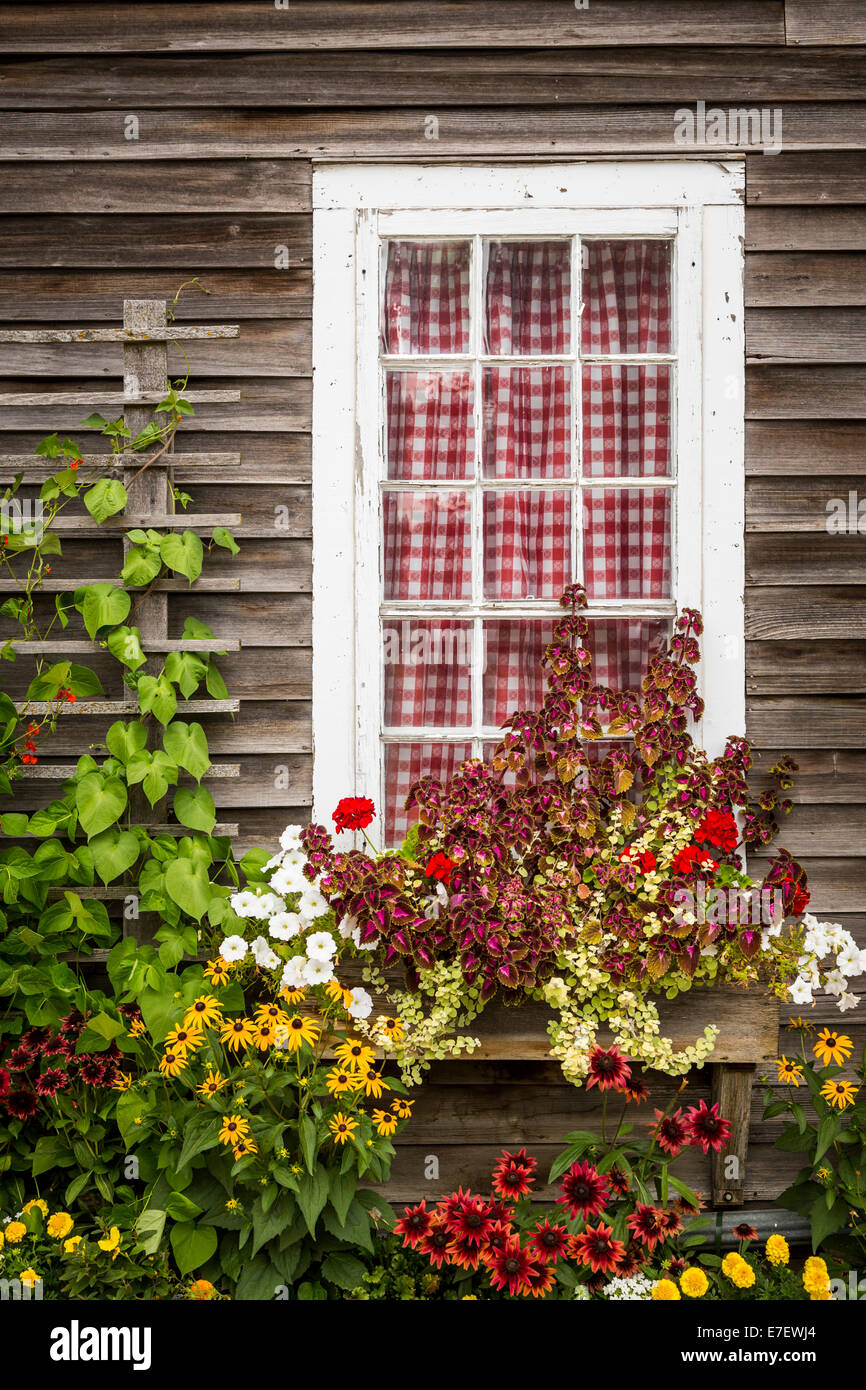 A cottage window with decorative flowers at the Little Red Wagon shop in the Amana Colonies, Iowa, USA. - Stock Image