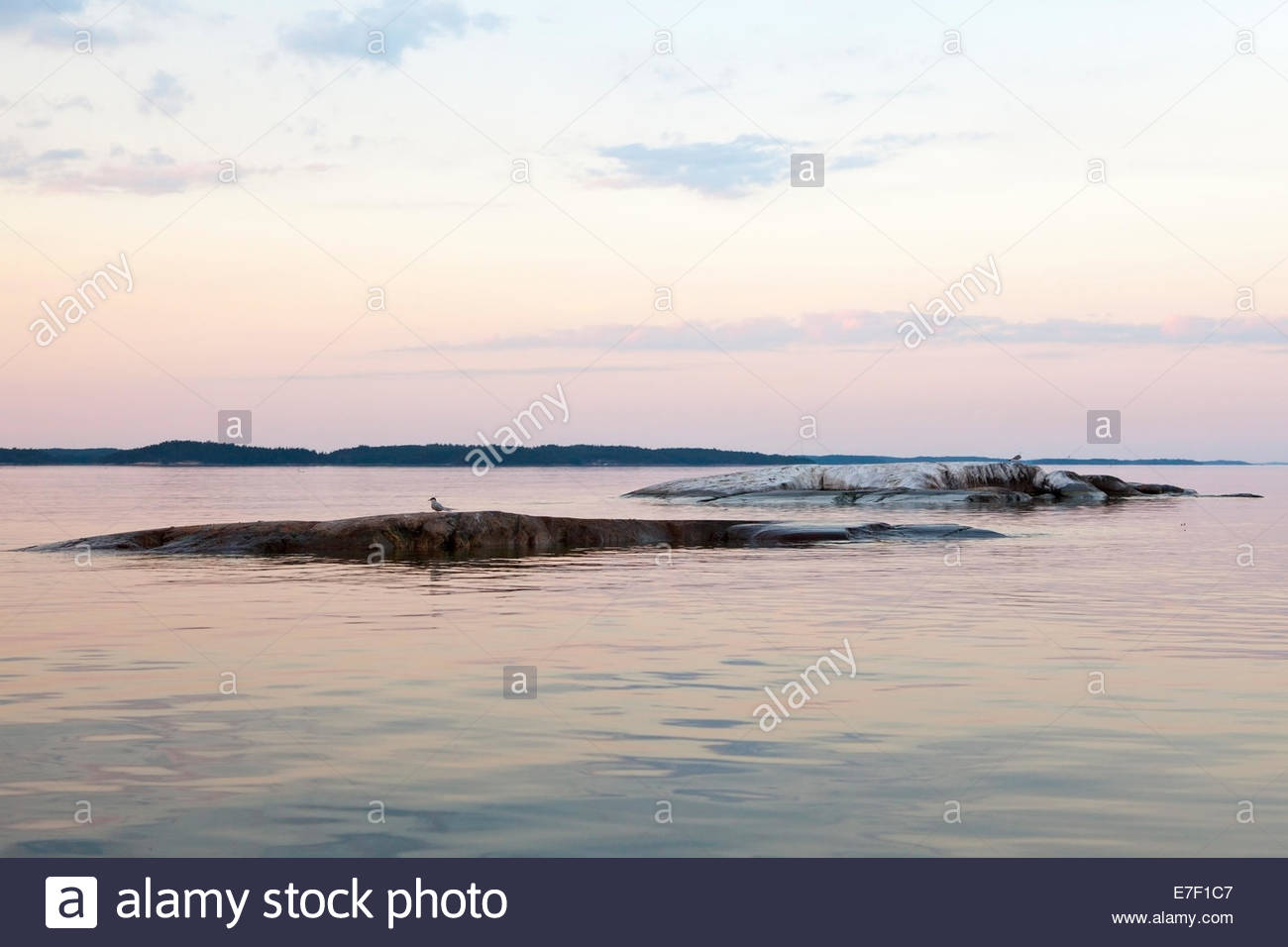 Twilight in the summer at the archipelago of Turku Finland - Stock Image