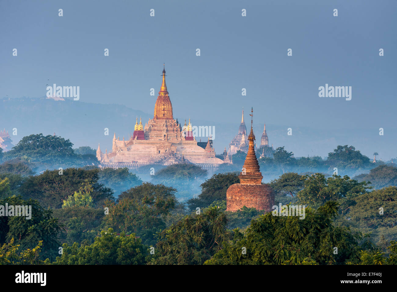 Ananda Temple in the morning fog, blue hour, gilded tower structure or Shikhara, stupas, pagodas, temple complex - Stock Image