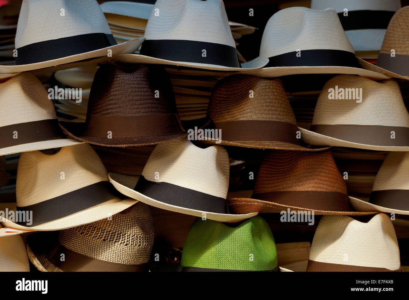 Where to buy panama hats in quito