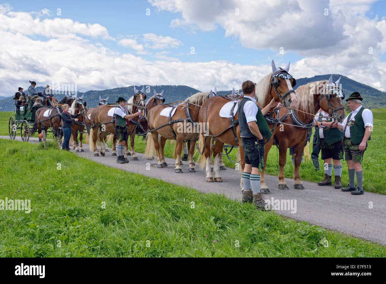 Ten-horse carriage with cold-blooded horses from Leitzachtal Valley, first international ten-horse carriage meeting, - Stock Image