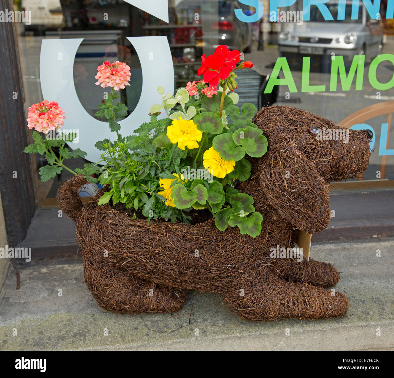 Quirky Garden Planters on quirky animals, quirky art, quirky signs, quirky garden ideas,
