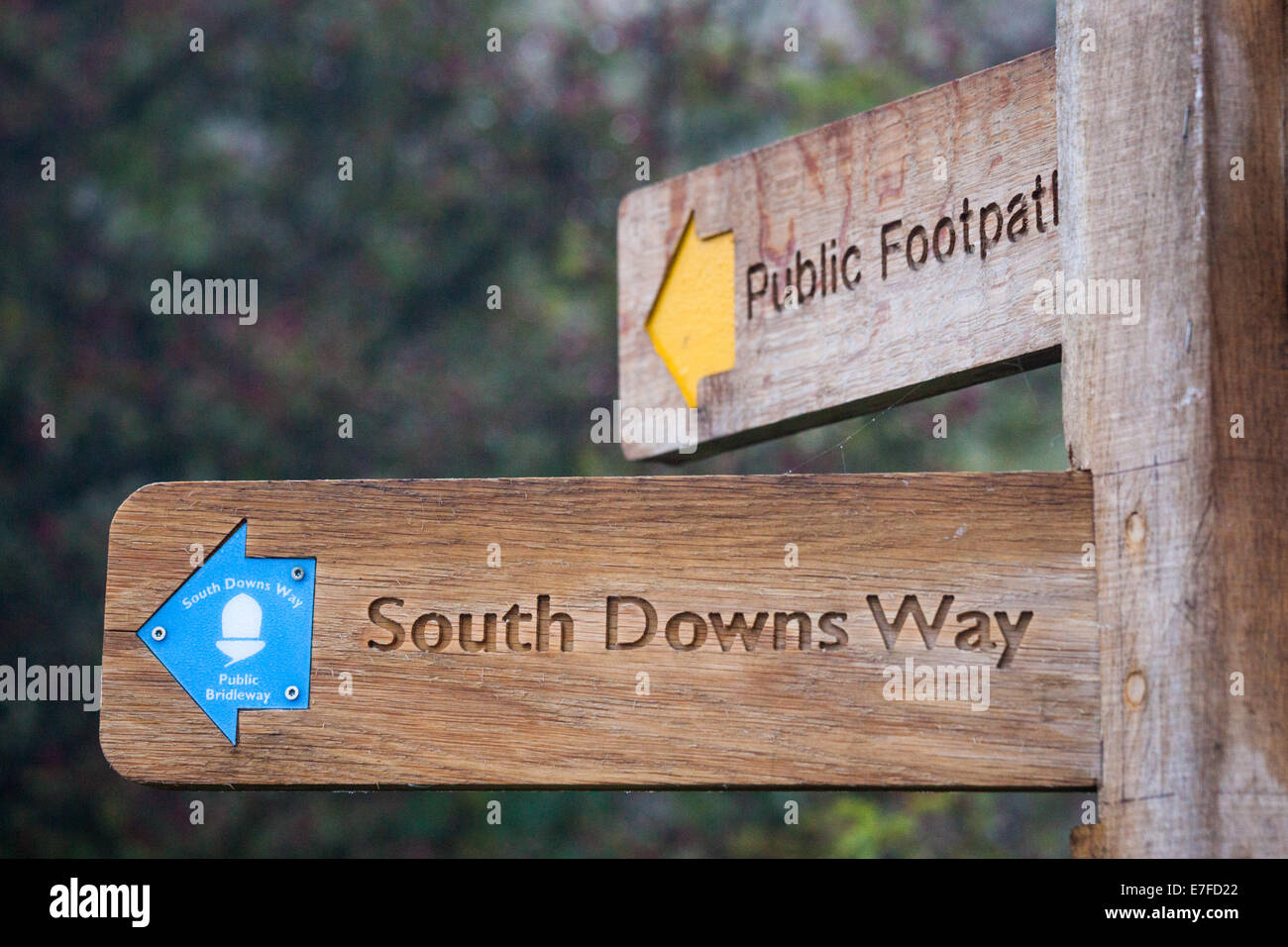 A sign on Butser Hill near Petersfield for the South Downs Way and a Public Footpath - Stock Image