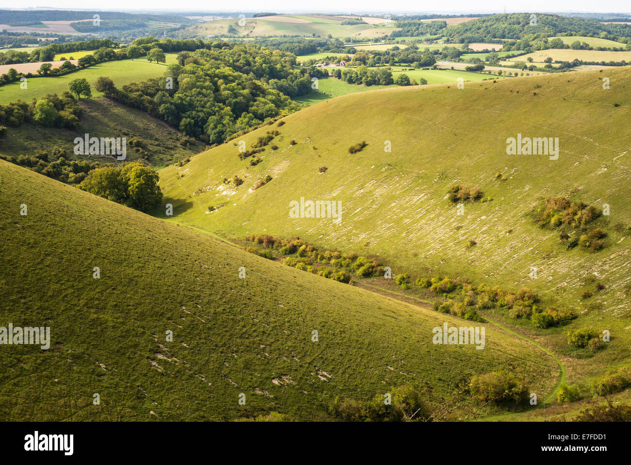 Rake Bottom (also known as Grandfather's Bottom) and Ramsdean Down, viewed from Butser Hill. Dry valley in chalk - Stock Image