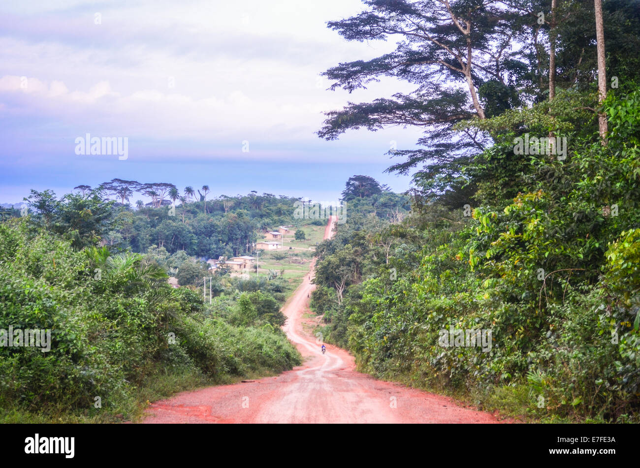Dirt road of red earth in Nimba County, Liberia, leading to the border with Cote d'Ivoire - Stock Image