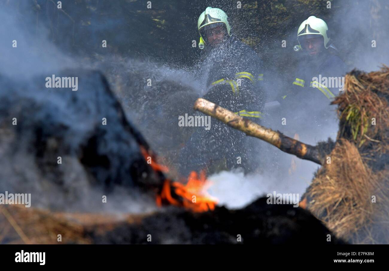 Hora Sv. Sebastiana, Czech Republic. 16th Sep, 2014. German and Czech firemen work to extinguish a forest fire during - Stock Image