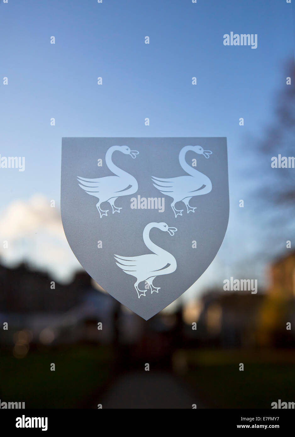 Three swans on Selby abbey's door. - Stock Image