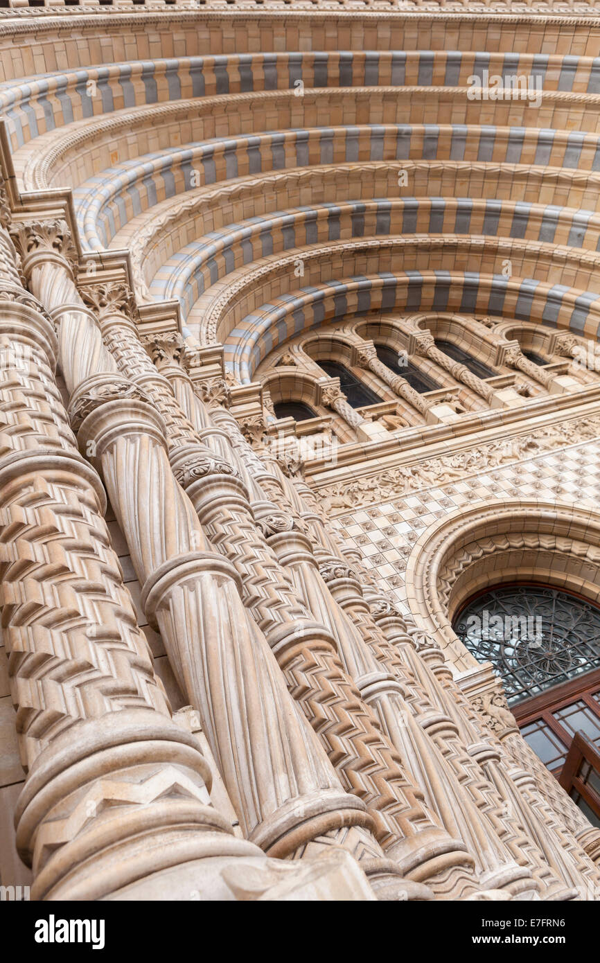 Detail of the main entrance of the Natural History Museum, London, England - Stock Image