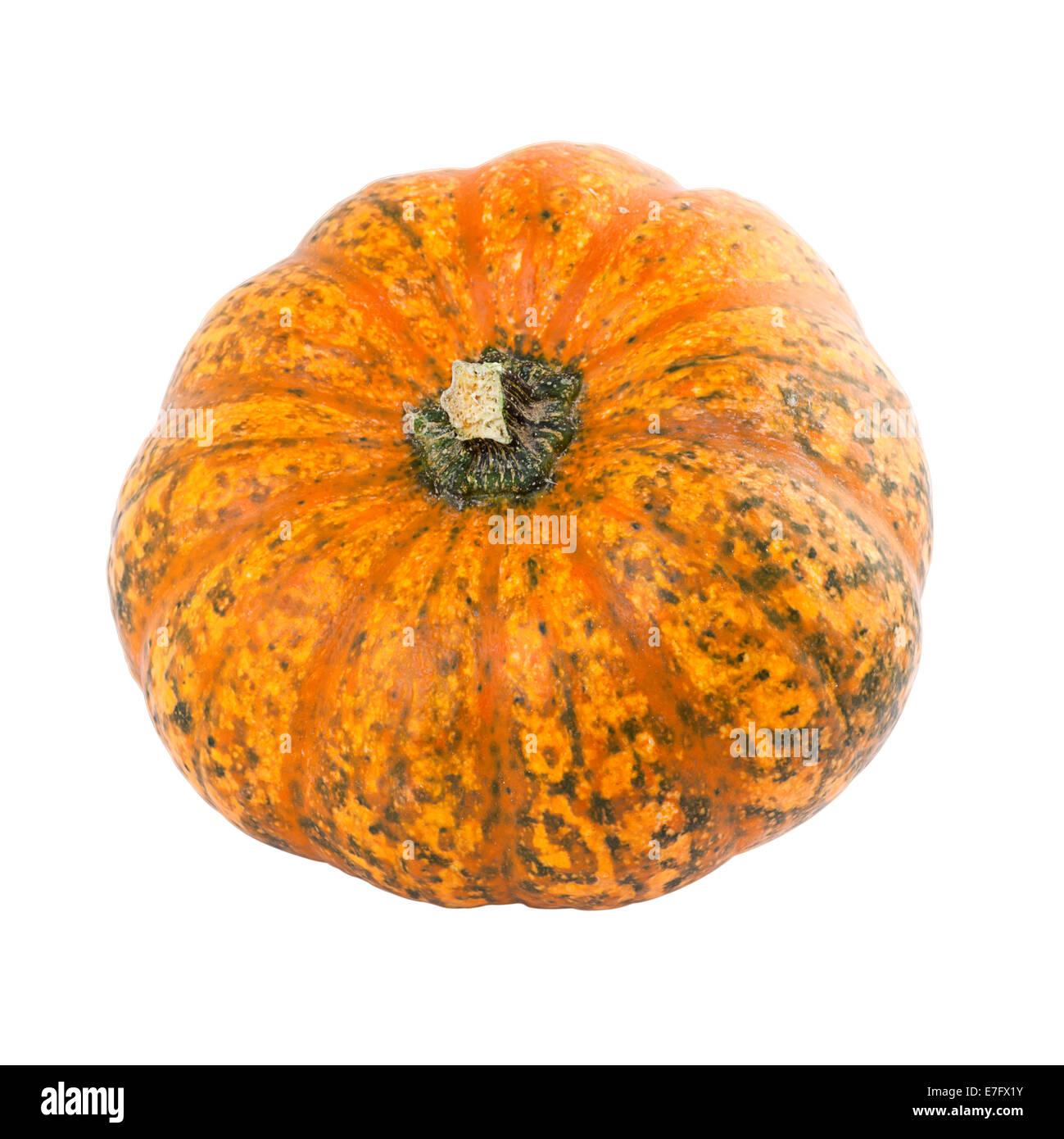 large pumpkin cutout stock photos large pumpkin cutout stock