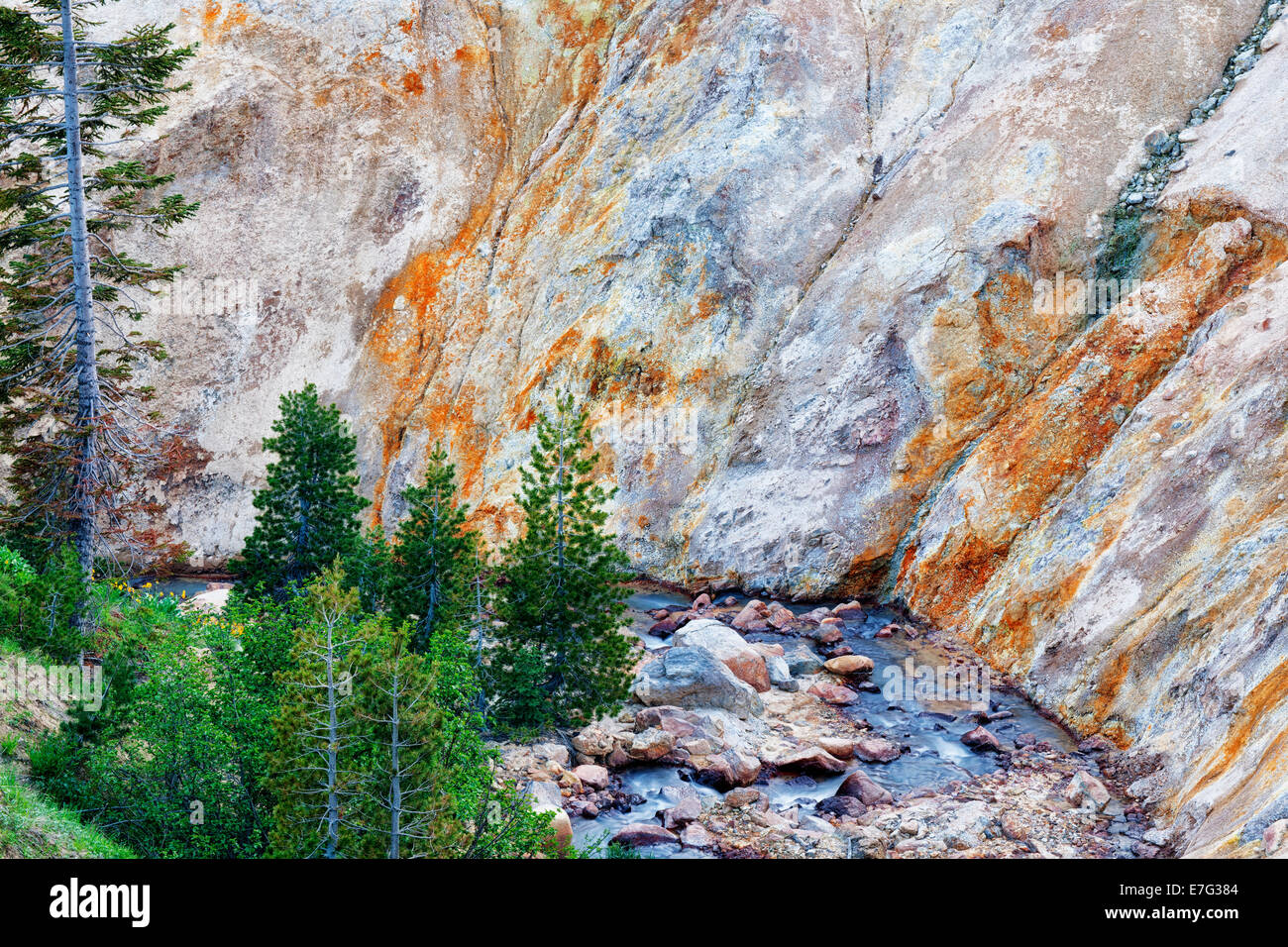 East Sulfur Creek passes the canyon walls of thermal mineral deposits left in California's Mt Lassen Volcanic National - Stock Image