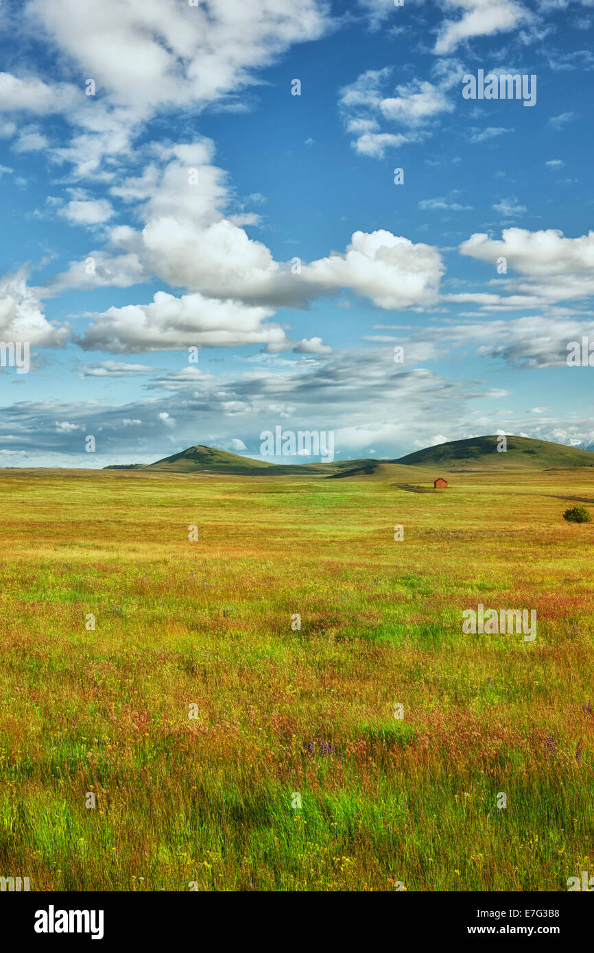 Clouds pass over a red barn in NE Oregon's Wallowa Valley with the spring bloom of wildflowers in the Zumwalt Prairie - Stock Image