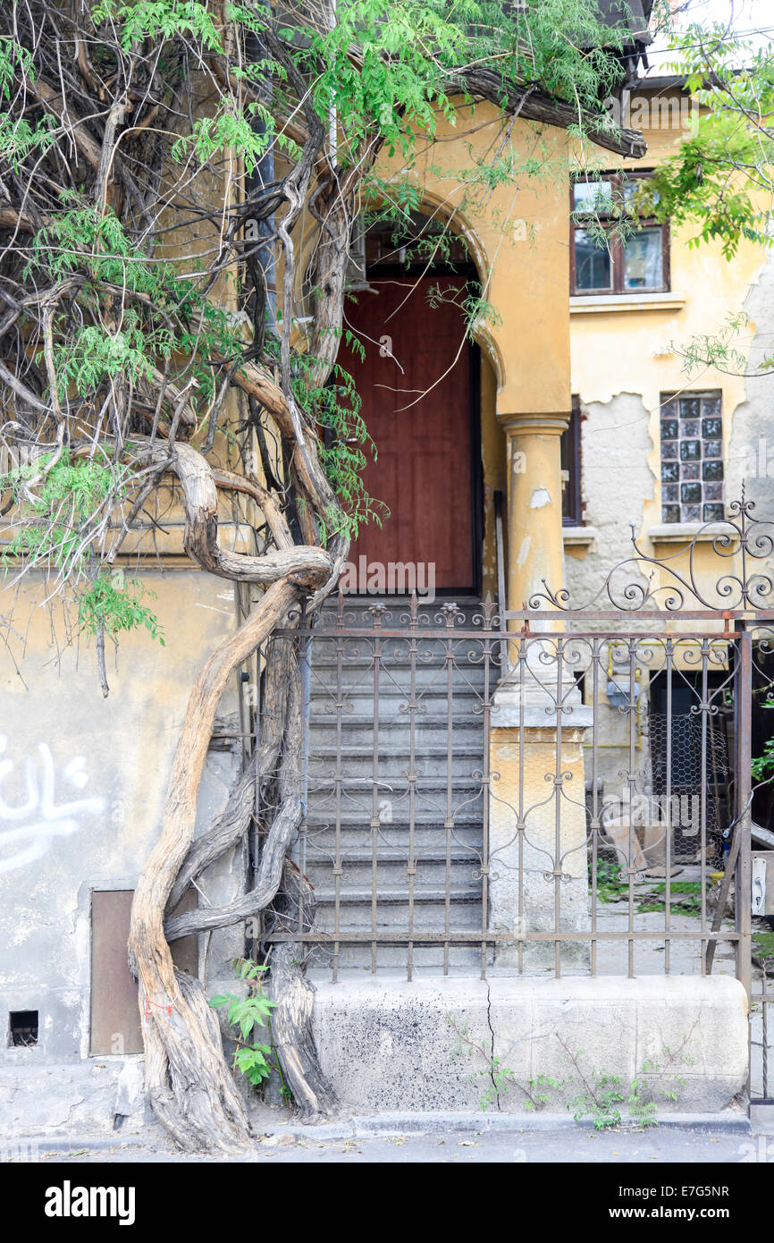 Post communist decay, abandoned building deterioration, Bucharest Romania - Stock Image