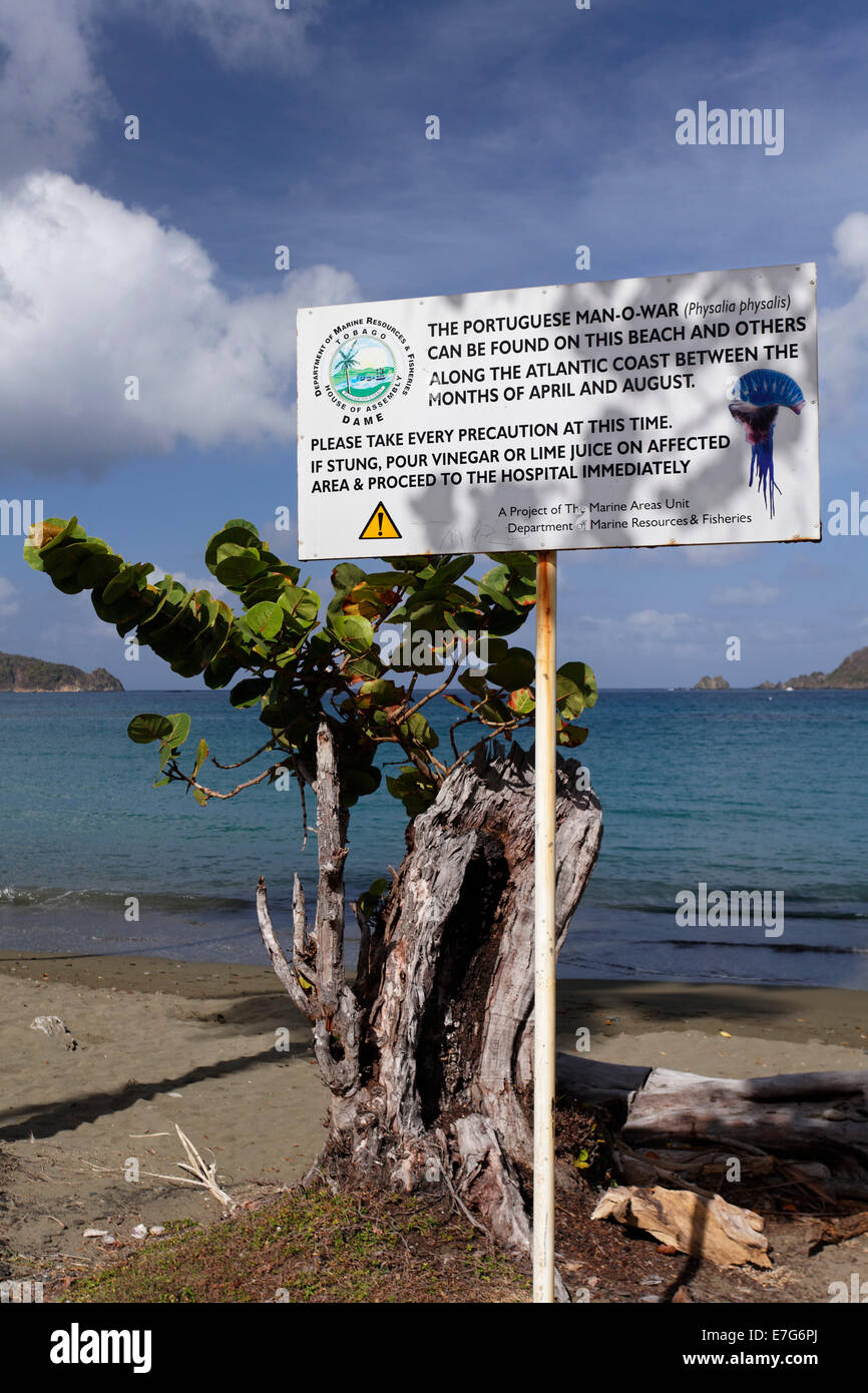 Warning sign on the beach, warning of Portuguese Man O'War (Physalia physalis), which delivers a painful sting, - Stock Image