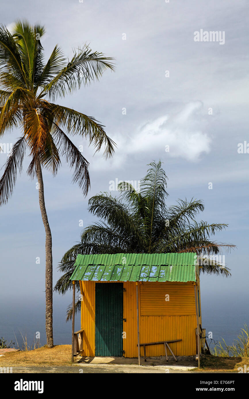 Small yellow hut with green tin roof, coconut trees, Tobago, Trinidad and Tobago - Stock Image