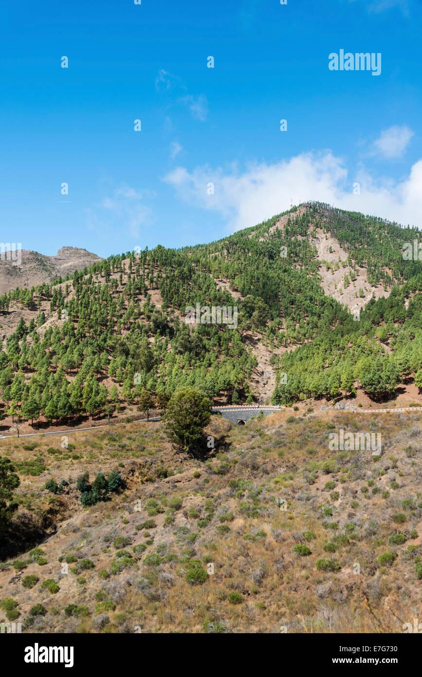 Road bridge, Santiago del Teide, Tenerife, Canary Islands, Spain - Stock Image