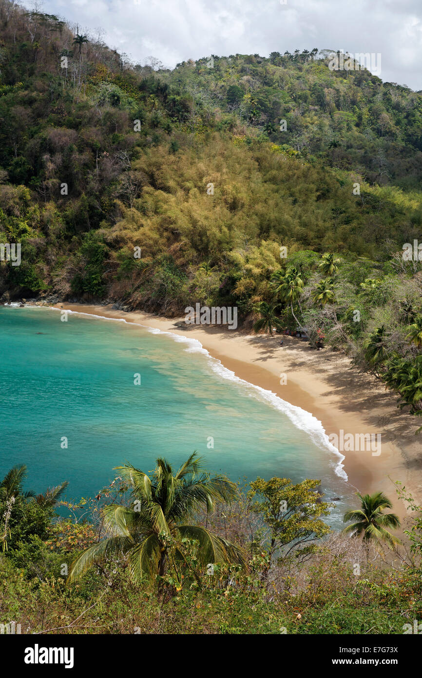 Sandy beach, Parlatuvier Bay, Tobago, Trinidad and Tobago - Stock Image