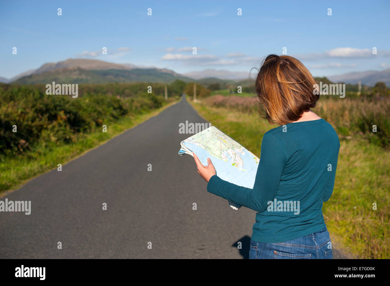 woman alone reading a map - Stock Image
