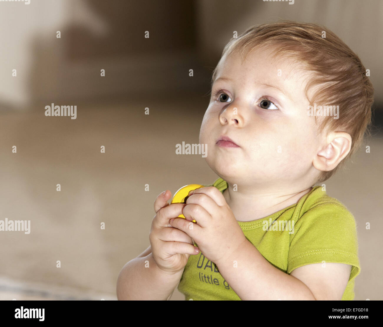 Adorable little boy with blond hair is holding a yellow block/toy.  Clermont Florida USA - Stock Image
