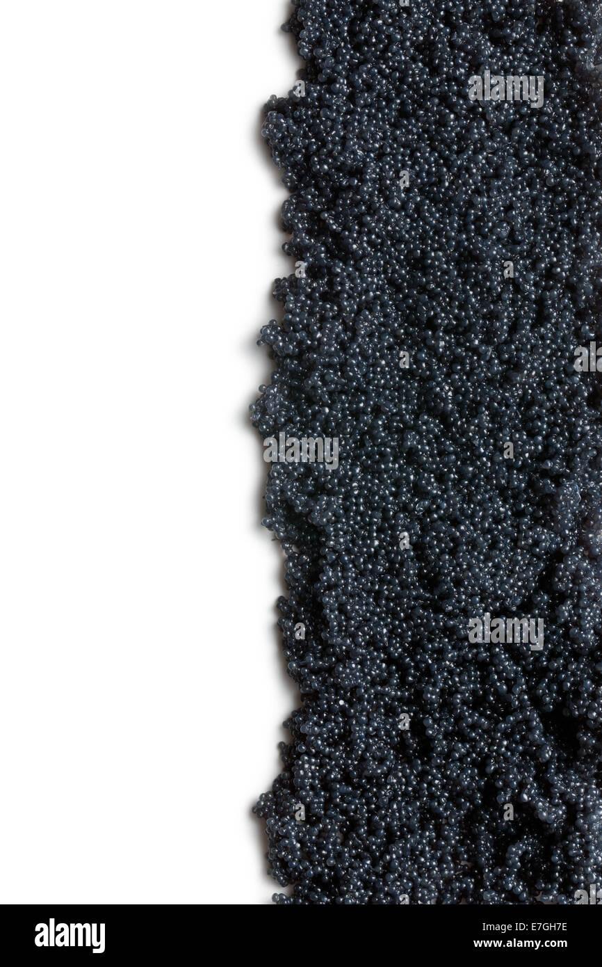 black caviar on white background - Stock Image