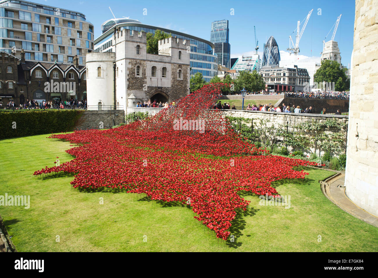Tower of London Poppies, moat: with a sea of ceramic poppies in remembrance of WW1, London, England, UK. Art installation - Stock Image