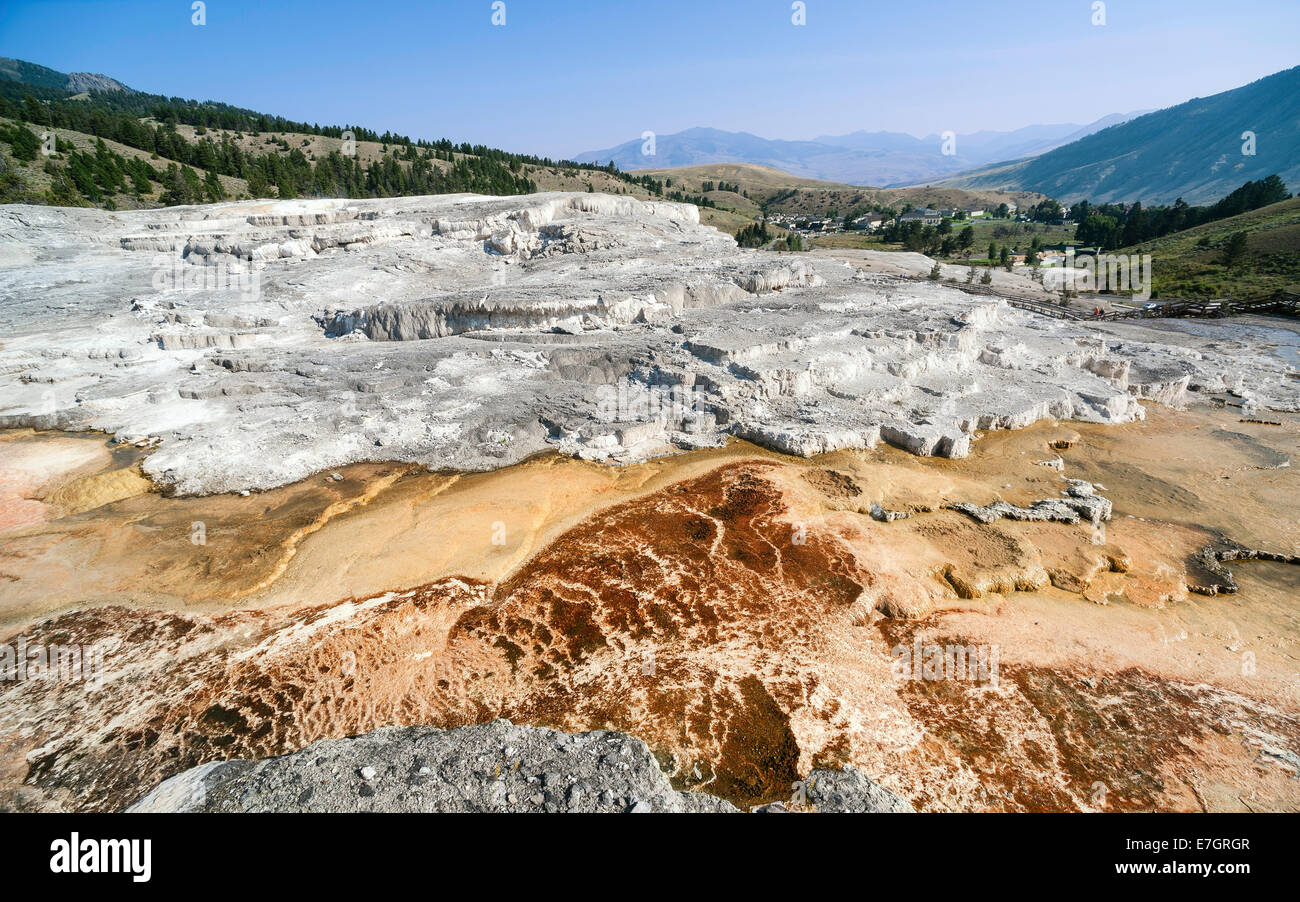 Calcium Carbonate and other deposits from hot springs in the heart of Yellowstone National Park with Mammoth in - Stock Image