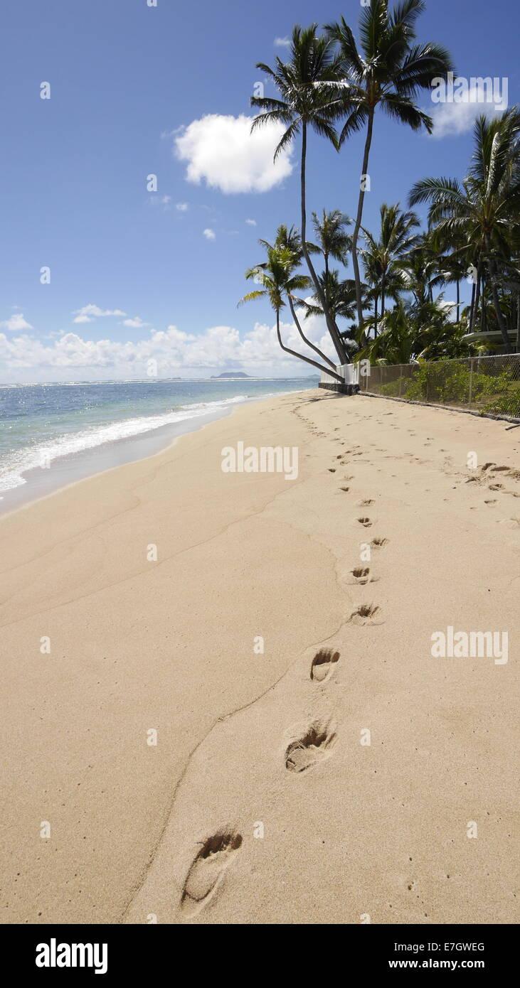 Kaaawa Beach Park, Oahu, Hawaii, shadow - Stock Image