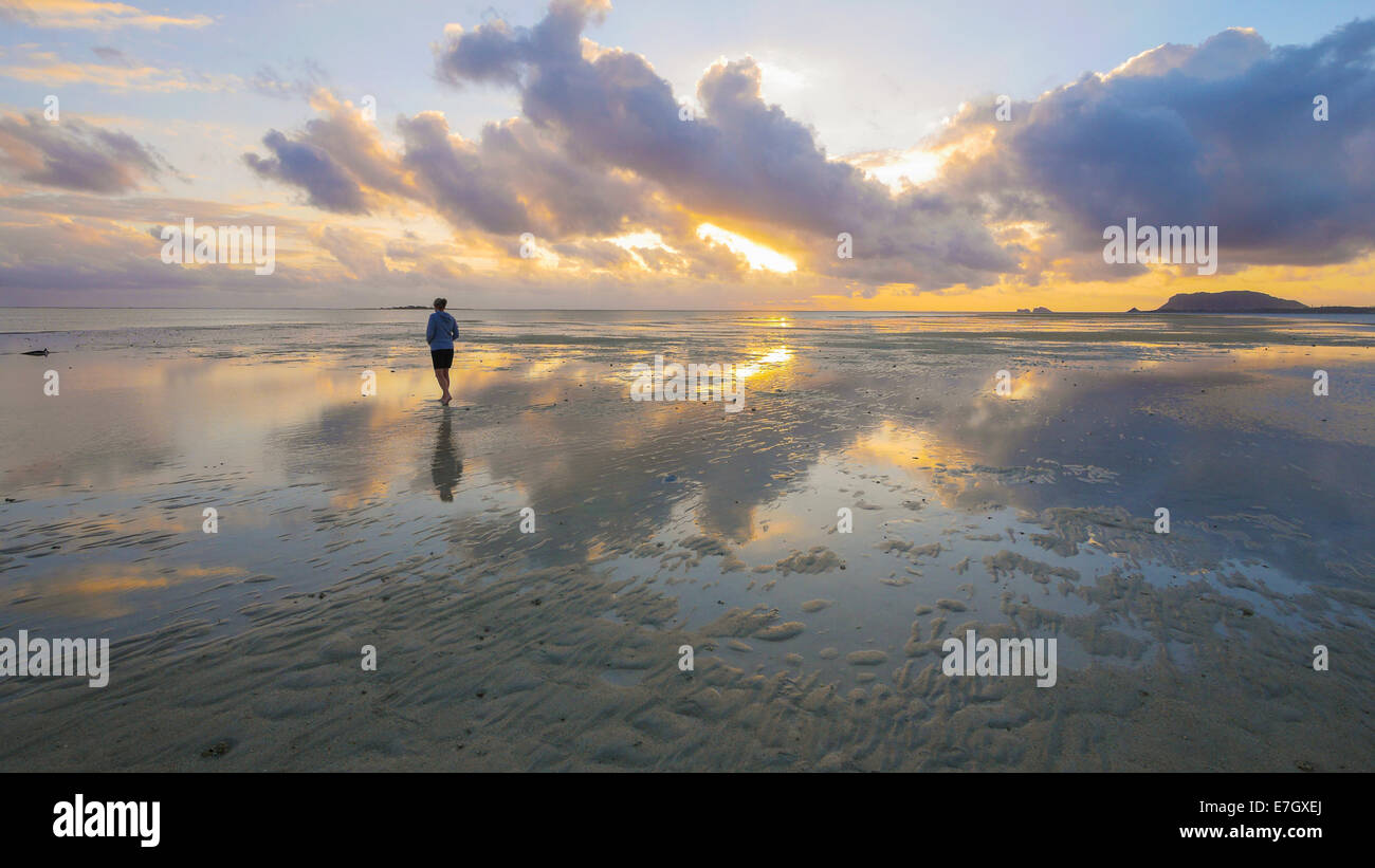 Sandbar, Kaneohe Bay, Oahu, Hawaii - Stock Image
