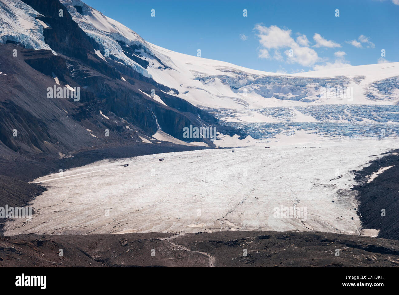 Elk203-7412 Canada, Alberta, Jasper National Park, Columbia Icefield, Athabasca Glacier - Stock Image