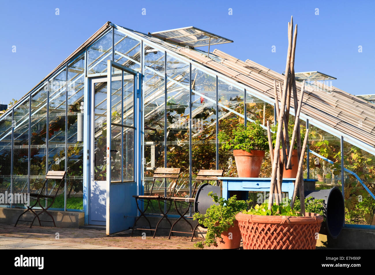 DORDRECHT, THE NETHERLANDS - OCTOBER 23, 2011: Greenhouse used to cultivate vines in the gardens of Villa Augustus - Stock Image
