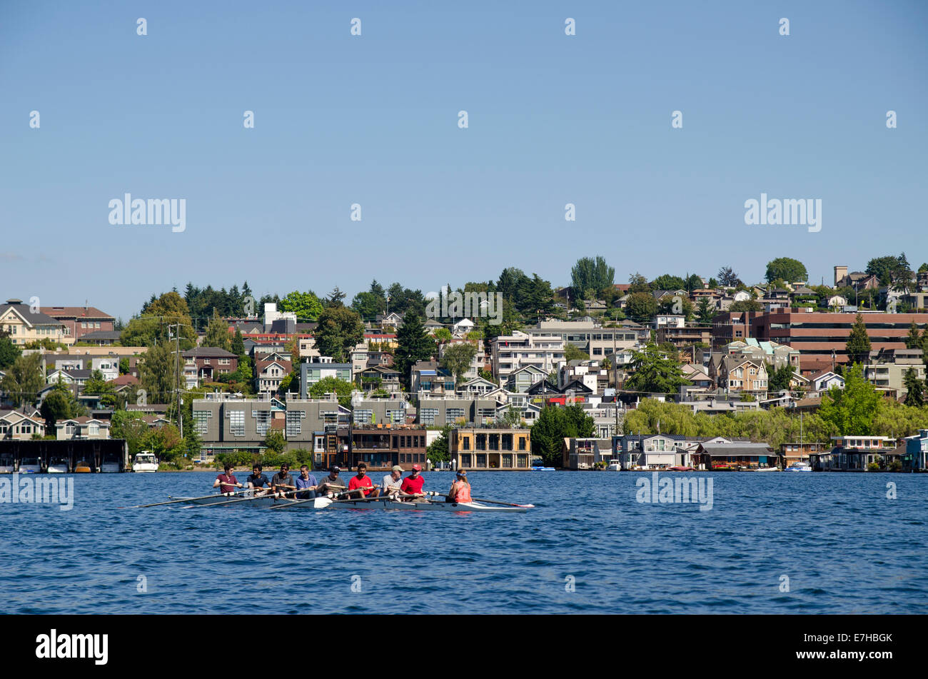 View of rowers on Lake Union, Seattle - Stock Image