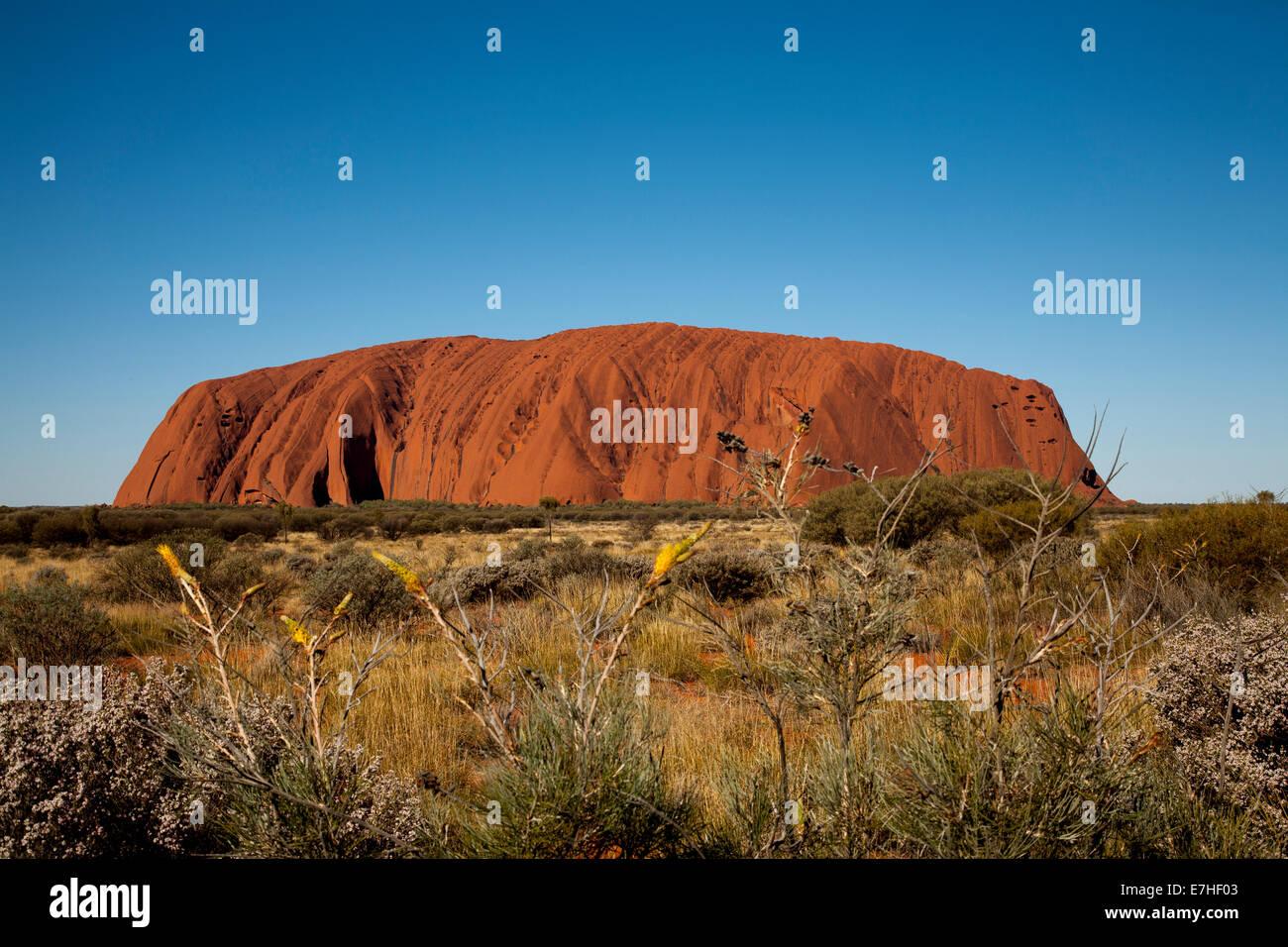 Ayers Rock, Uluru-Kata Tjuta National Park, Northern Territory, Australia - Stock Image