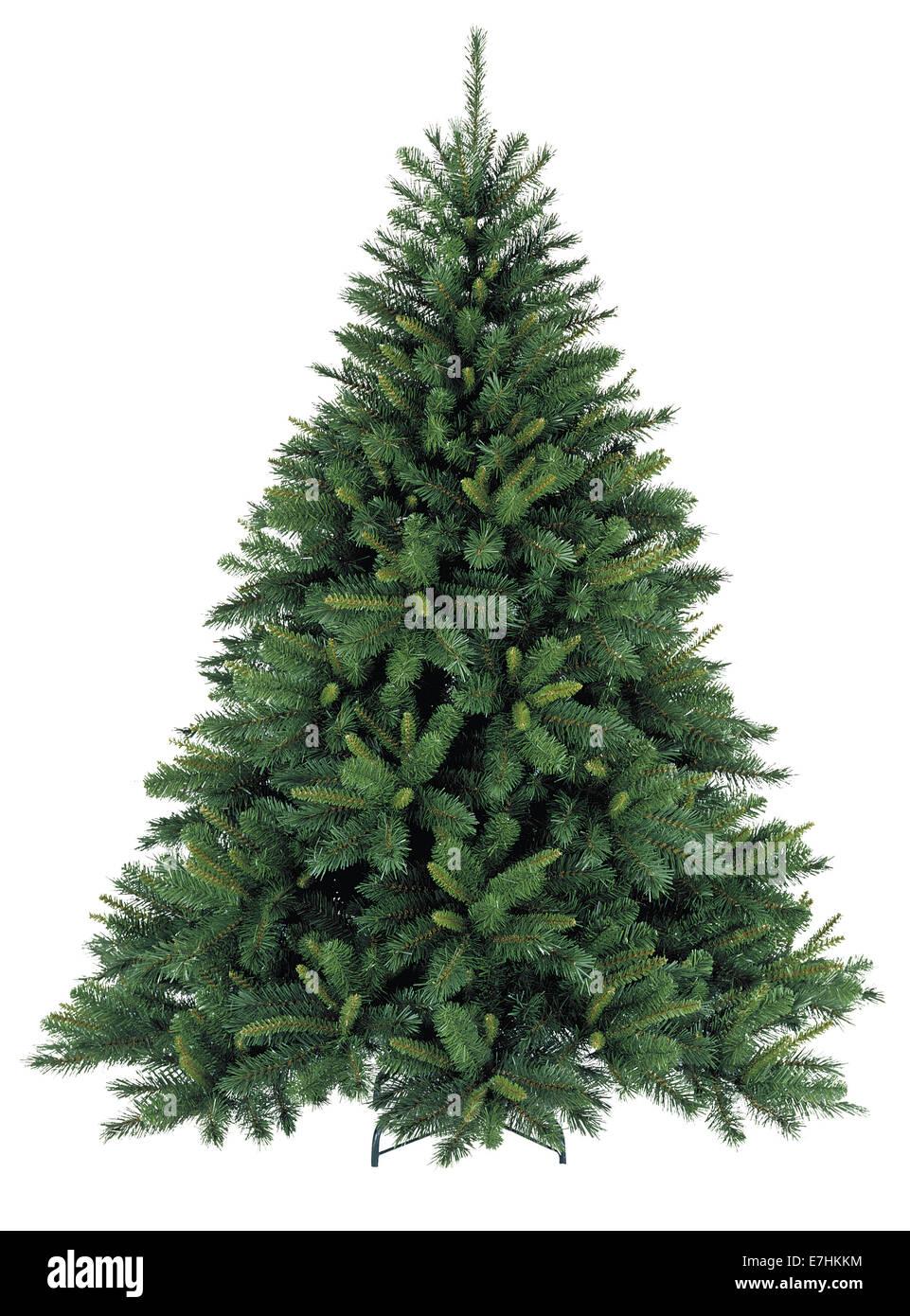 Bare Christmas tree - Stock Image