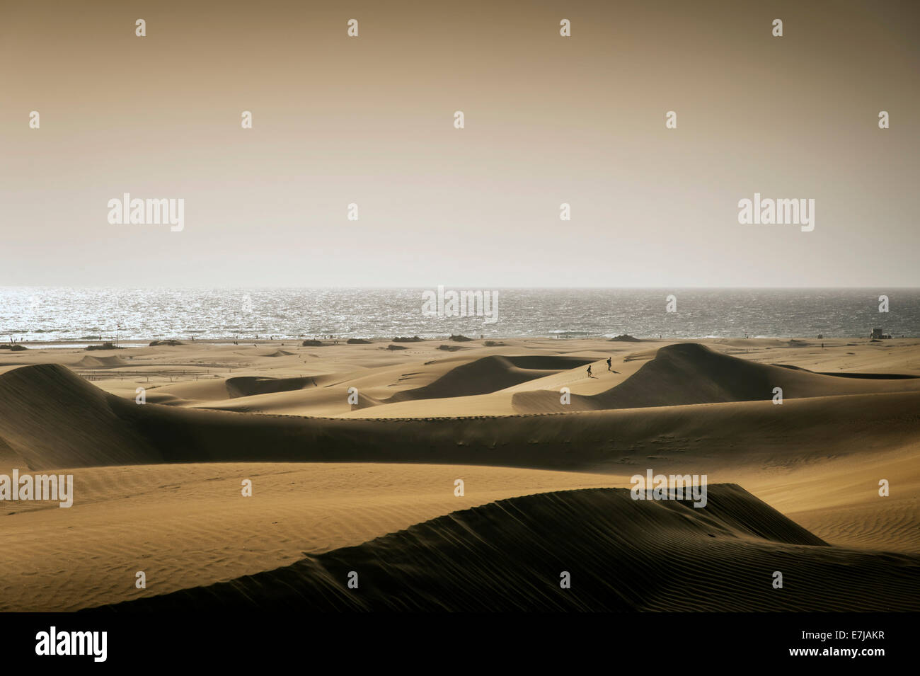 The Dunes of Maspalomas in the diffuse light of a sand storm, Playa del Ingles, Gran Canaria, Canary Islands, Spain - Stock Image