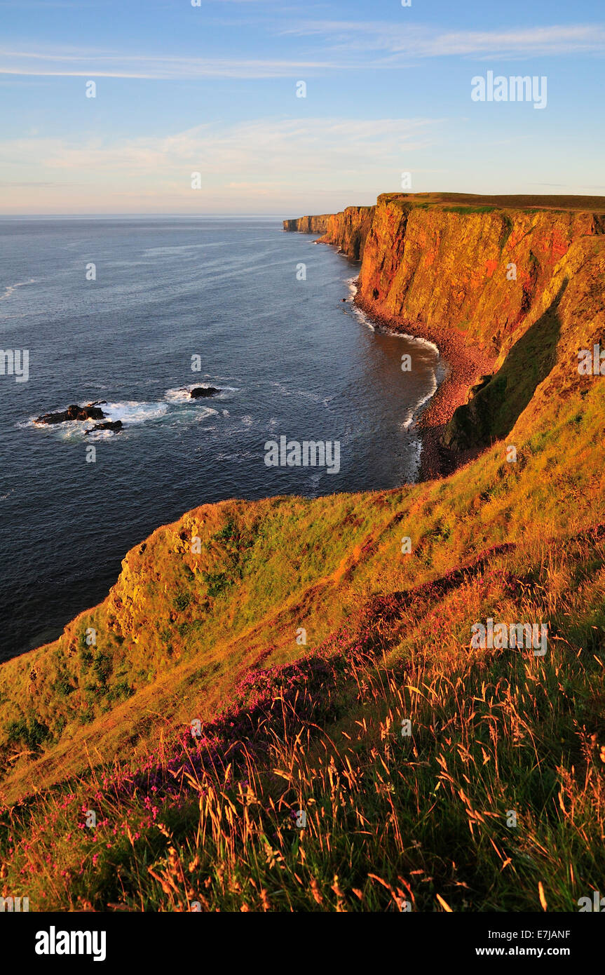 Steep coast near Duncansby Head in the morning light, John o'Groats, Caithness, Sutherland and Easter Ross, - Stock Image