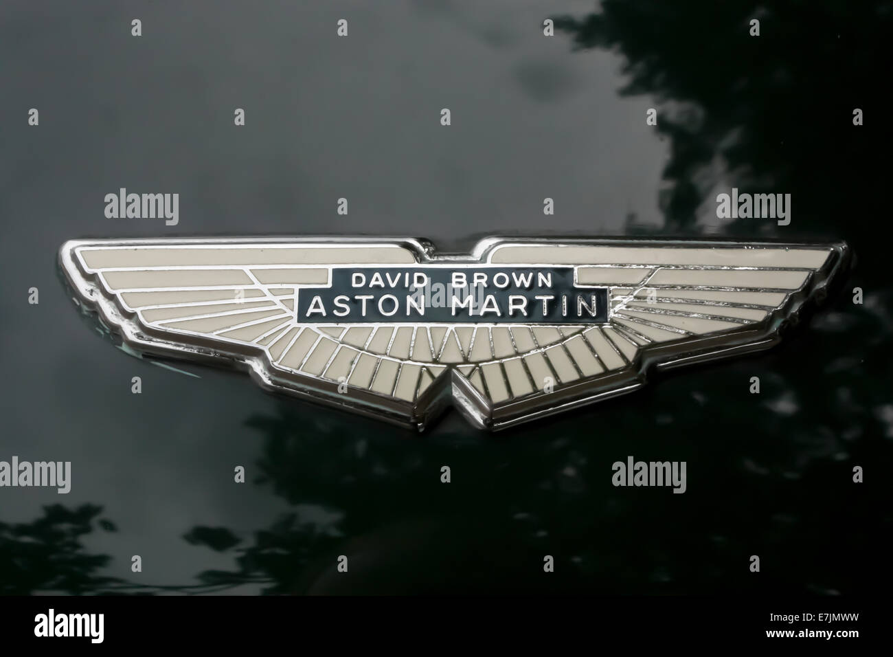 Aston Martin David Brown Badge on a DB4 at Silverstone Stock Photo
