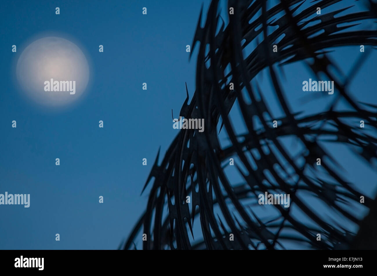 Concertina wire boundary, night sky with moon as background, selective focus - Stock Image