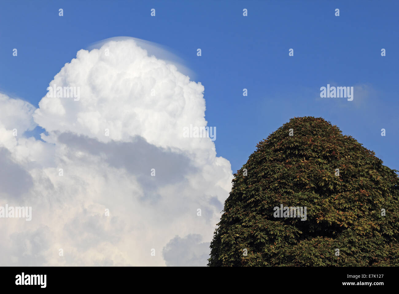Bushy Park, SW London, England, UK. 19th September 2014. Unusual cloud formation in the sky over South West London. - Stock Image