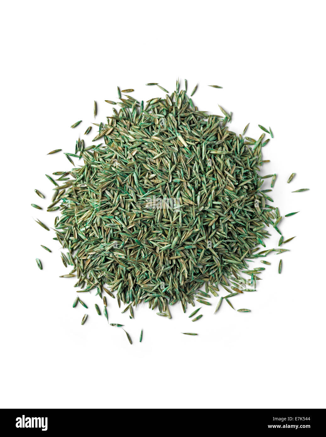 Grass Seed isolated on white - Stock Image