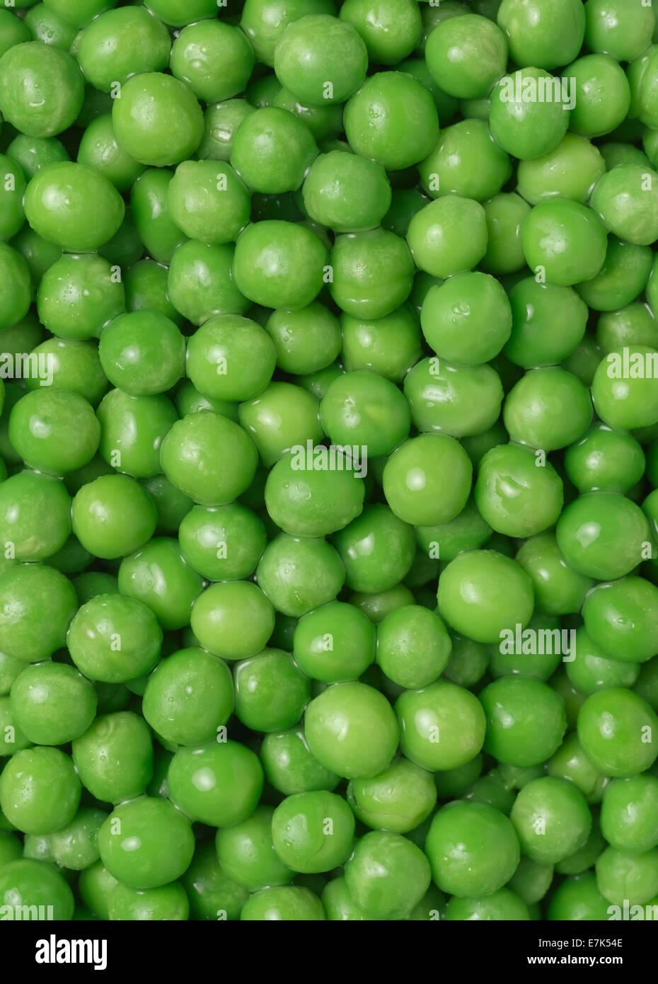 Garden Peas full frame - Stock Image