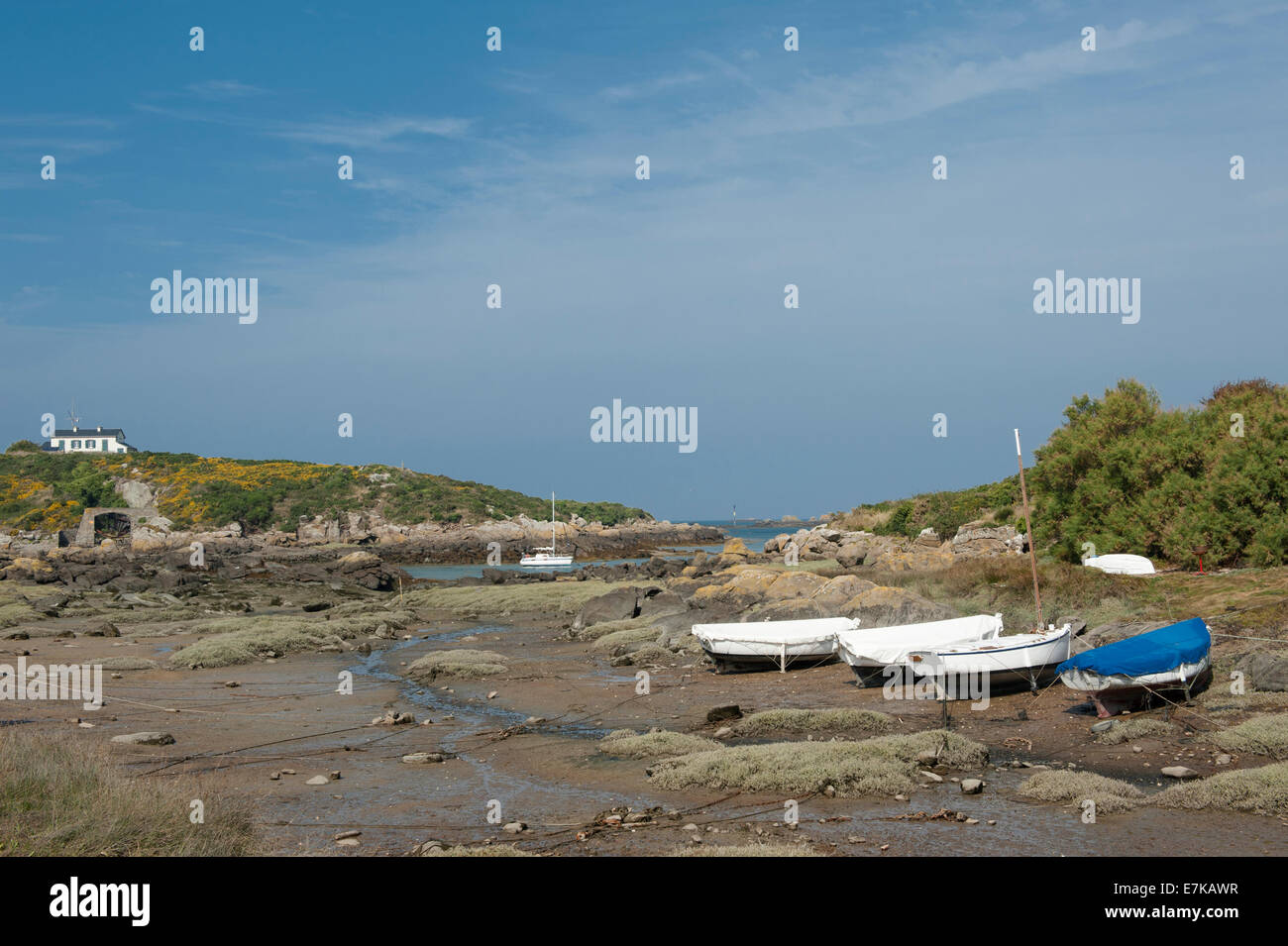 Boats moored at low tide in an inlet  of the Chausey Channel at Grand-Île, Chausey Islands, Basse-Normandie, - Stock Image