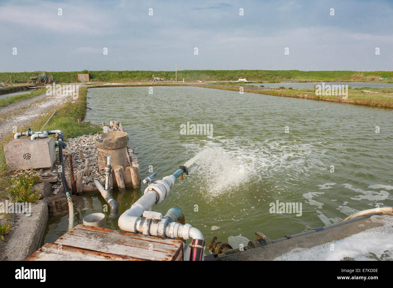 Watering basins for oysters at Vivier-sur-mer, Brittany, France - Stock Image