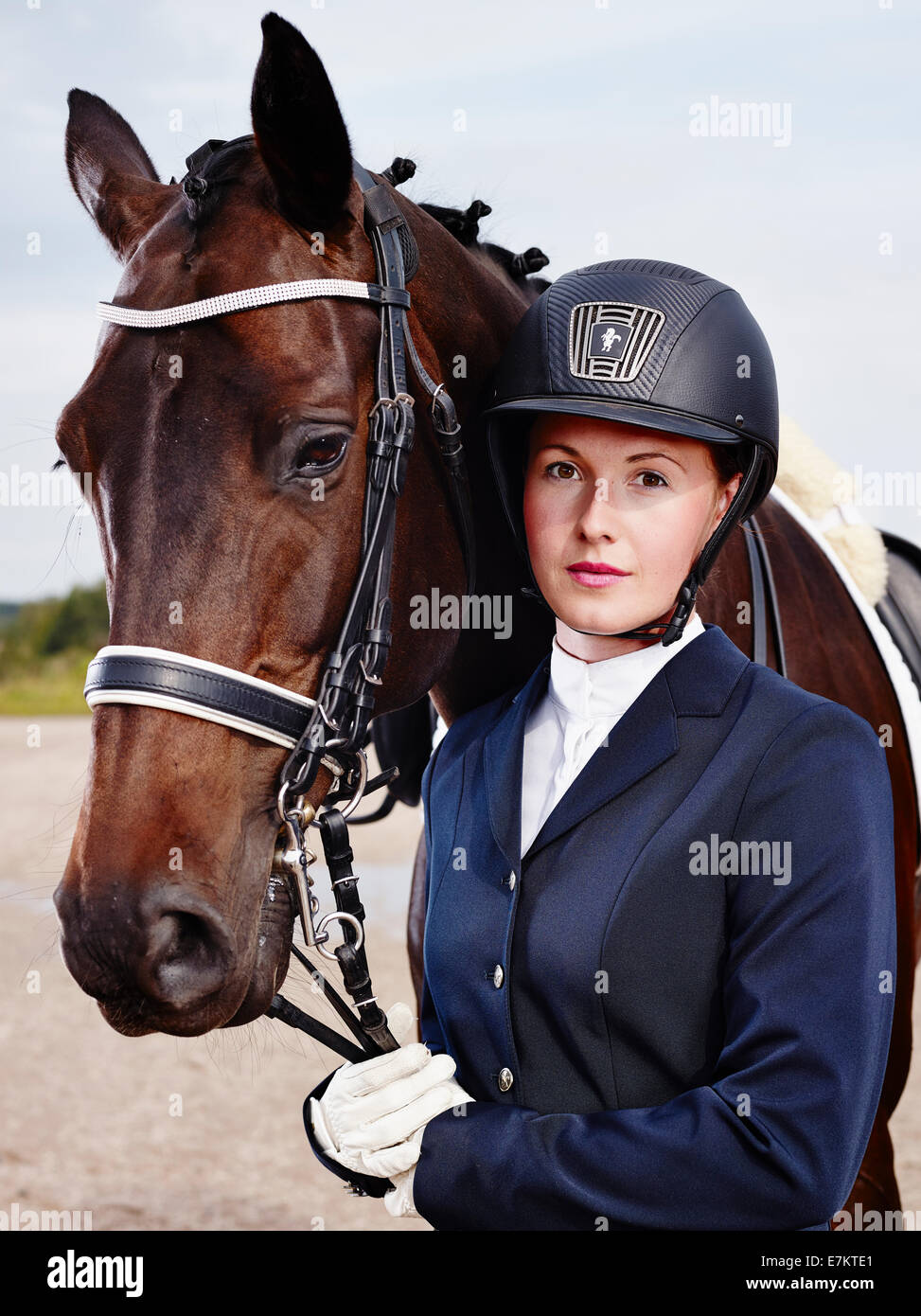 Brown horse and beautiful woman wearing horse riding apparel - Stock Image