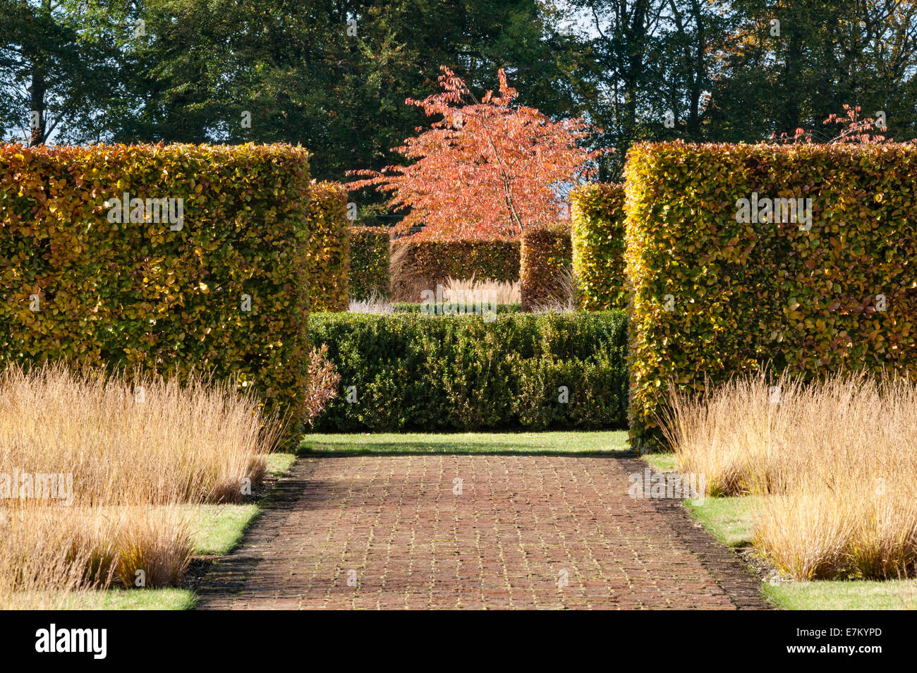 Piet oudolf stock photos piet oudolf stock images alamy for Piet oudolf fall winter spring summer fall