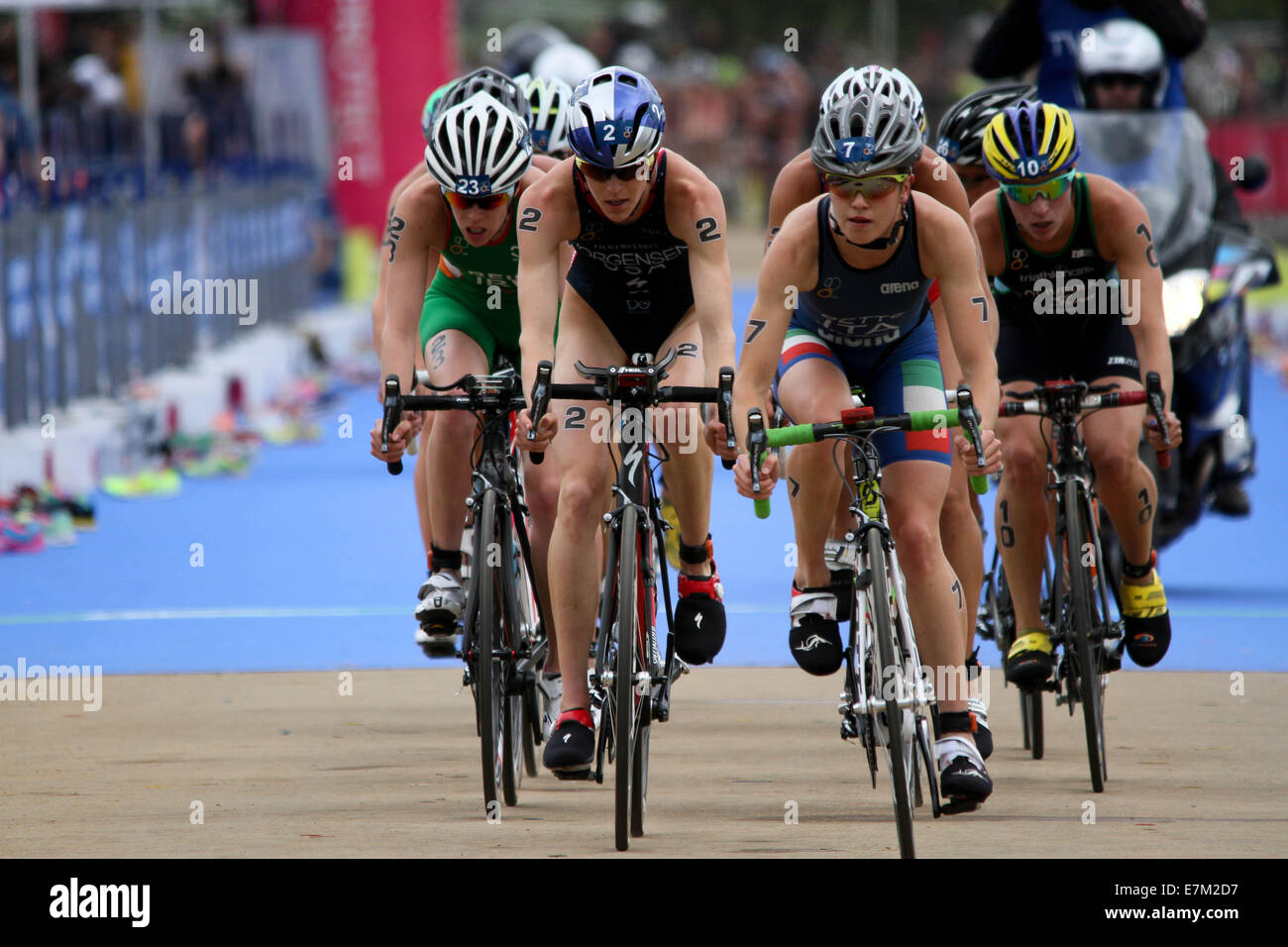 Gwen Jorgensen of USA bike stage at the ITU 2014 held in London. - Stock Image