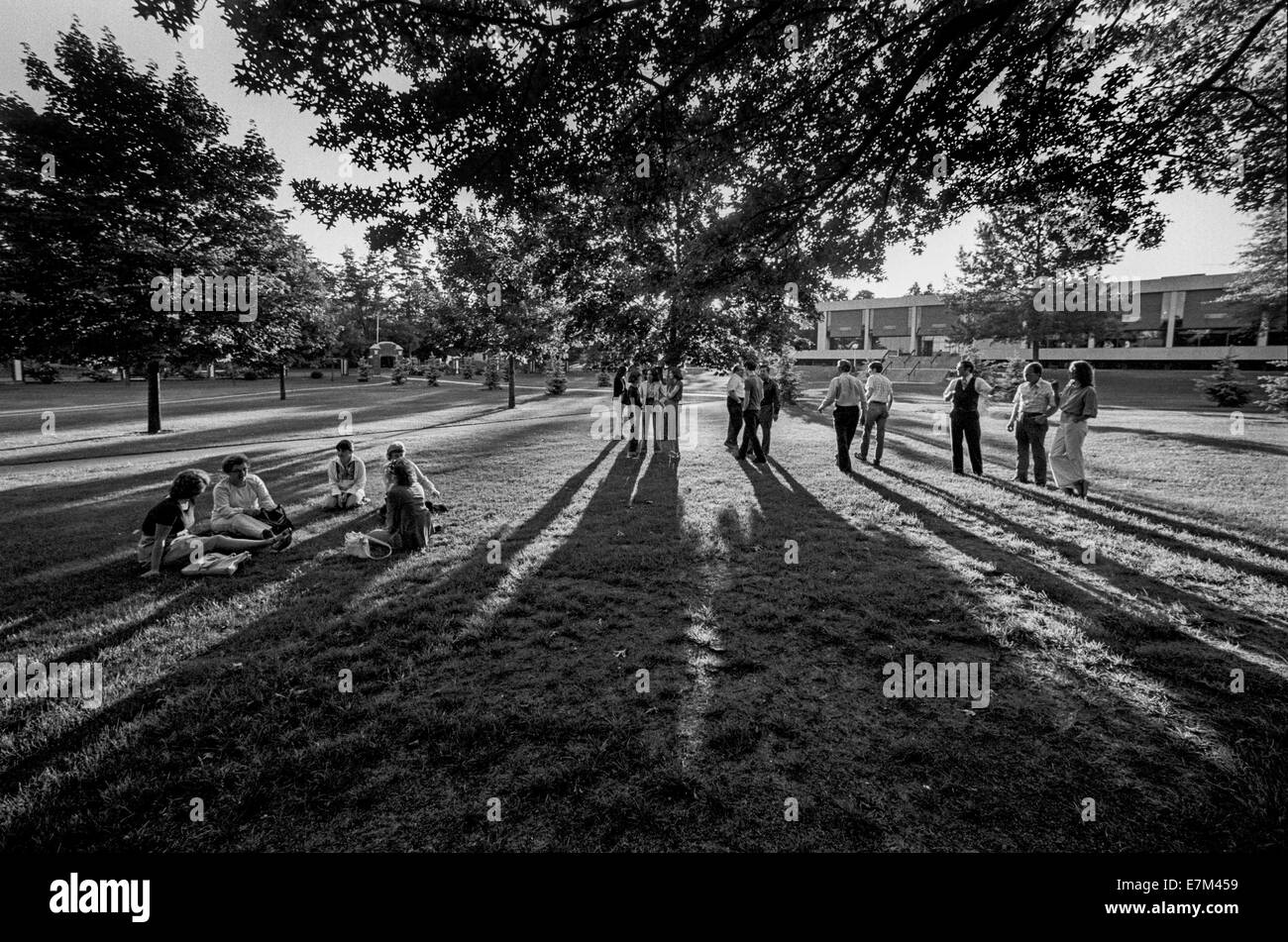 College students throw long shadows as they wait in the evening sun for their classes on the campus of Framingham - Stock Image