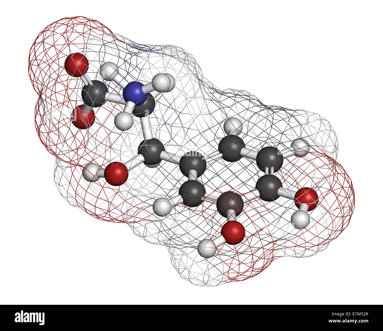 Droxidopa (L-DOPS) hypotension (low blood pressure) drug molecule. Atoms are represented as spheres with conventional - Stock Image