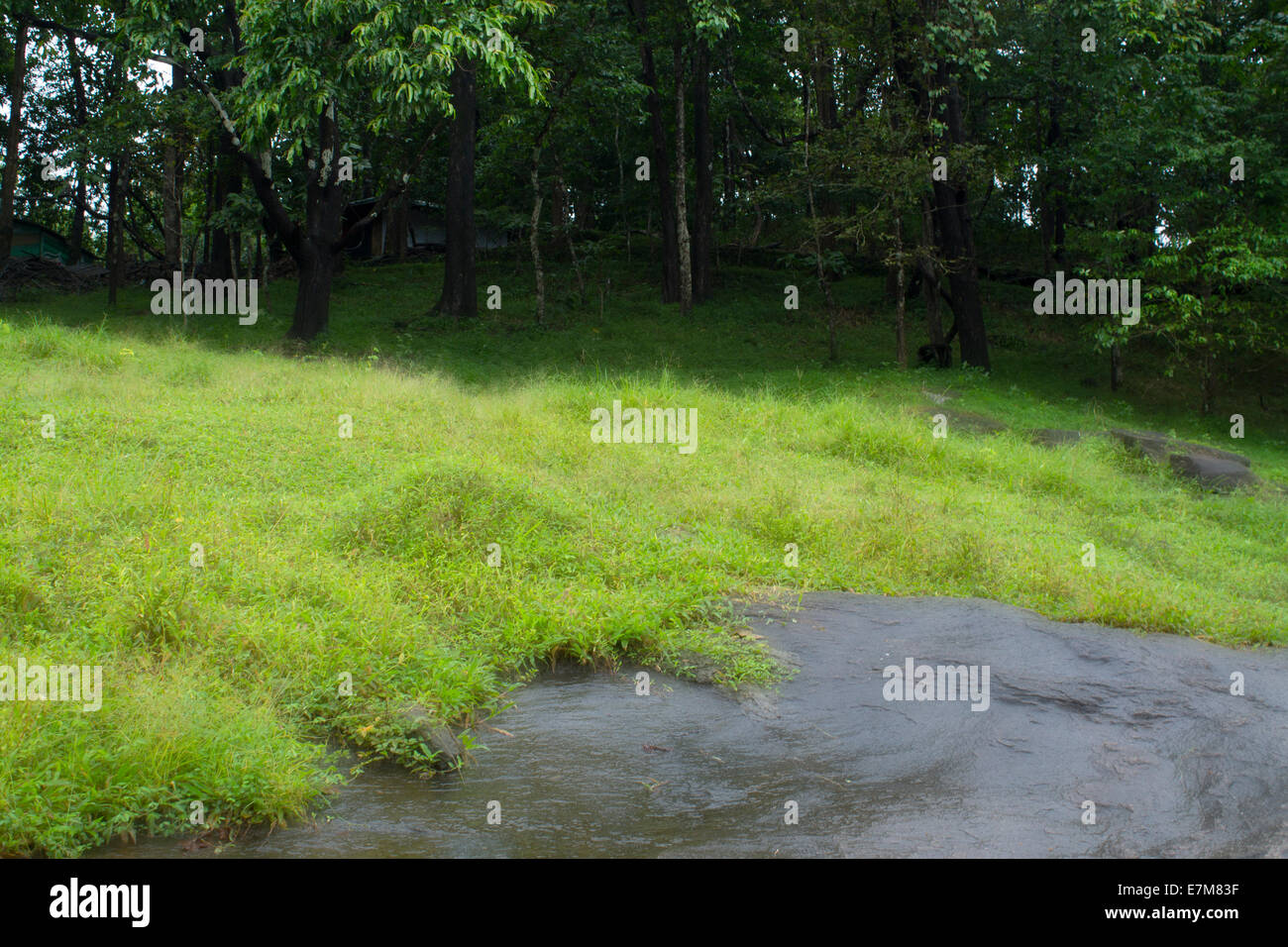 Stock Image - Grass Vally - Stock Image