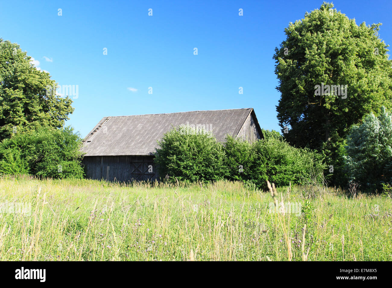 An abandoned house in the field - Stock Image
