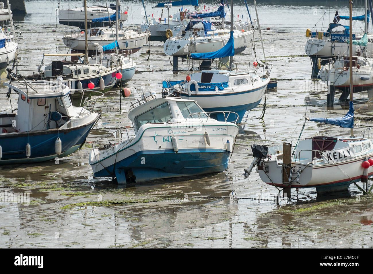 Harbour; Low tide; Boats; Sail boats; Moored; Moorings; Mud; Muddy; Nobody - Stock Image
